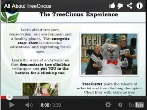 treecircus youtube thumbnail